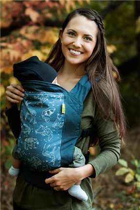 Mochila Ergonomica Boba carrier 4GS Constellation