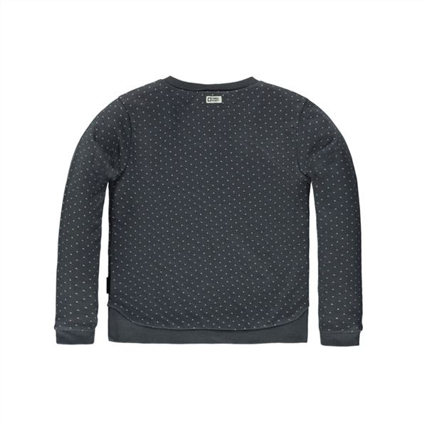 Sudadera Tumble´n dry Fayette Gris Oscuro (1)