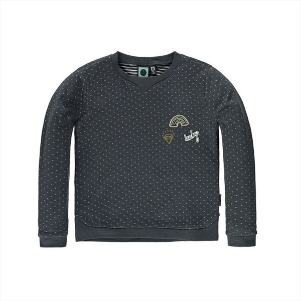 Sudadera Tumble´n dry Fayette Gris Oscuro